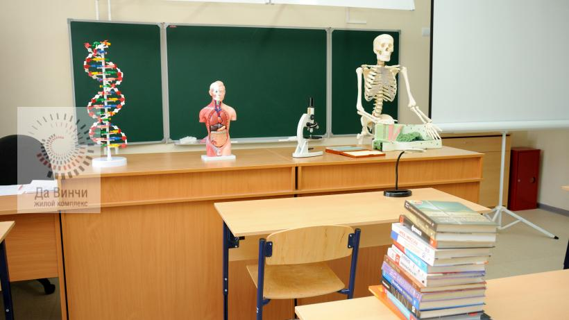 Внеурочные занятия в школах Подмосковья: какие новые дисциплины введут с 1 сентября